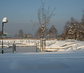 02-winter-am-see-18-1-13-49