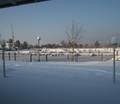 15-winter-am-see-18-1-13-8