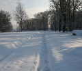 22-winter-am-see-18-1-13-14