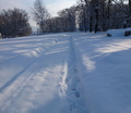 25-winter-am-see-18-1-13-40