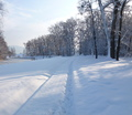 28-winter-am-see-18-1-13-41