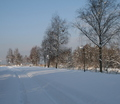 31-winter-am-see-18-1-13-19