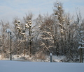 34-winter-am-see-18-1-13-21