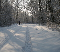 36-winter-am-see-18-1-13-22