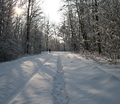 38-winter-am-see-18-1-13-23