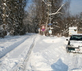 45-winter-am-see-18-1-13-27